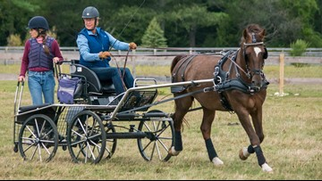 The Maine Driving Club steps back in time for a horse-and-carriage Derby