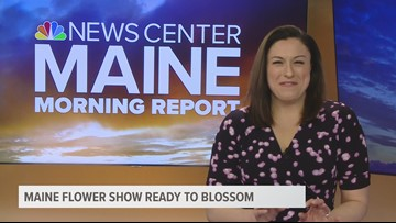 Maine Flower Show this week