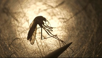 1st human case of West Nile virus in Mass. reported in 2019