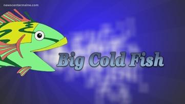 Big Cold Fish 032220