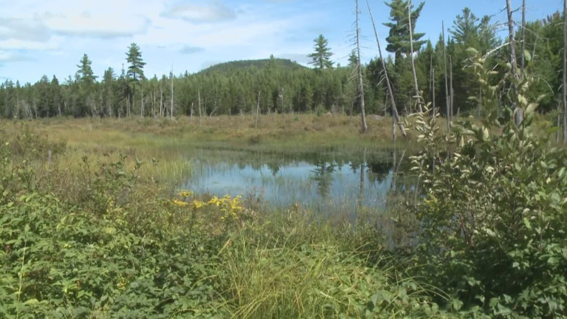 More than 26K acres in Maine North Woods to be protected