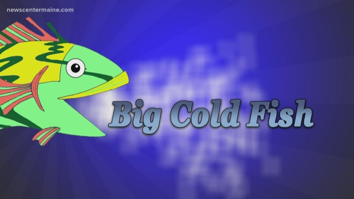 Big Cold Fish 032820