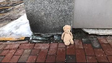 Lost in Portland: Teddy bear needs help getting home