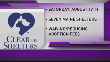 Clear the Shelters is Aug. 19