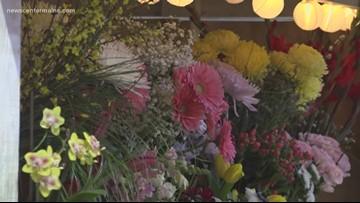 Flower show in Bangor