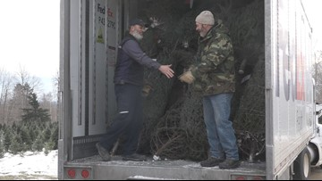 Tree farms send Christmas trees to troops