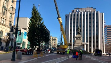 Holiday tree from Deering Oaks goes up in Downtown Portland