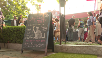 'Martinis for Mutts' fundraiser helps thousands of animals each year