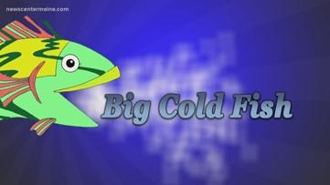 Big Cold Fish 30720