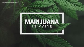 Portland approves marijuana business zoning