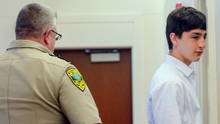 Third teen charged with murder of Litchfield woman reaches plea deal