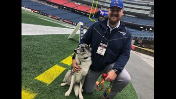 """A Mainer and his """"good boy"""" take care of the turf at Gillette Stadium"""