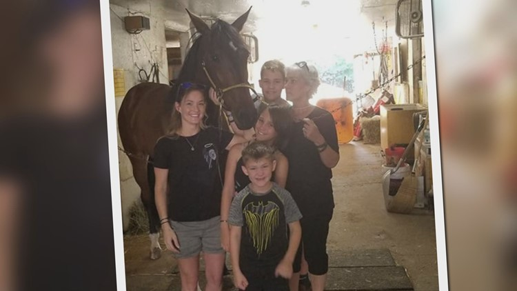 Cole Family Horse