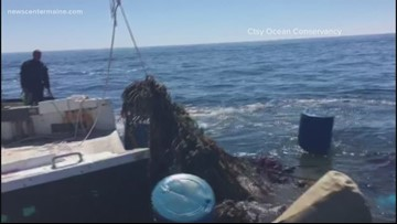 10,000 pounds of fishing gear hauled out of Maine's waters