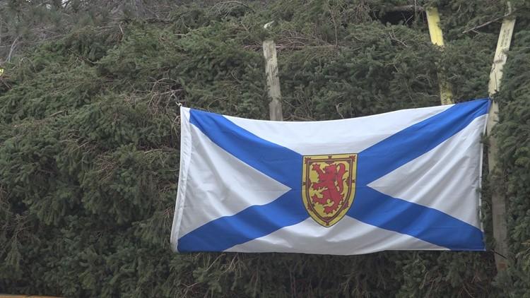 Halifax Tree