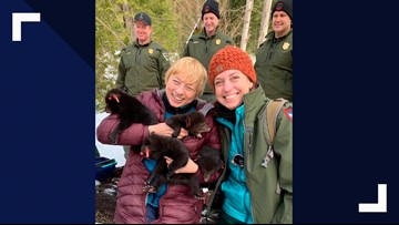 Maine Department of Inland Fisheries & Wildlife hosts contest to visit black bear den