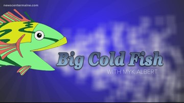 Big Cold Fish 010420