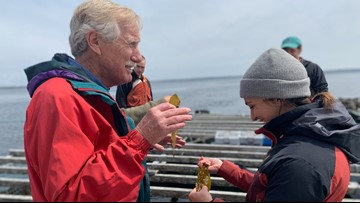 The future looks bright for Maine's growing aquaculture industry