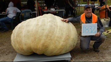 Giant pumpkin weighing 1,832 pounds sets record at Maine Pumpkinfest
