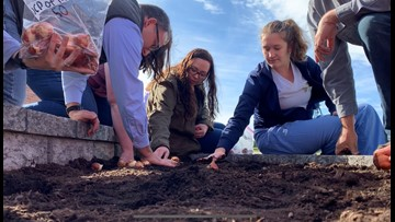 Mental Illness Awareness Week concludes with  planting tulips