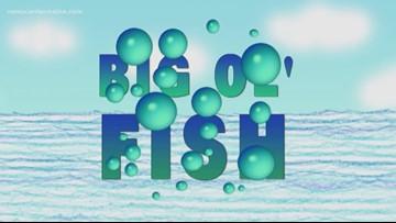 Big Ol' Fish 120218