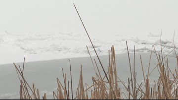 11 y/o Boy Hears Cries, Saves Child From Frozen Pond