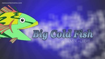 Big Cold Fish 032120