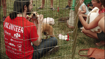Puppies find forever homes to kick off fundraising weekend