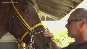 'Cpl. Cole' horse makes racing debut at Skowhegan Fair