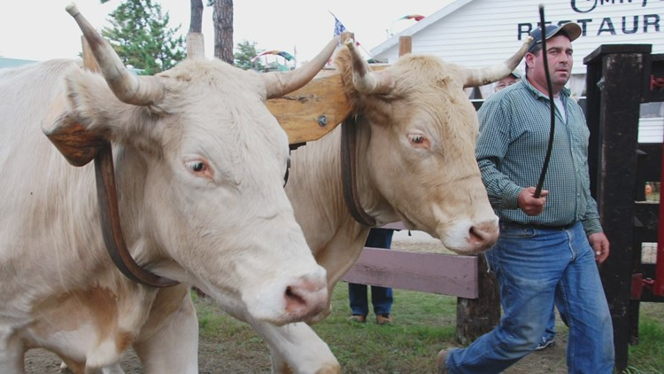 Fryeburg Fair to return this fall