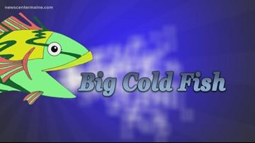 Big Cold Fish 011920
