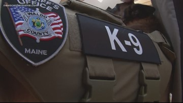 K9 gets vest