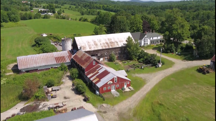 'Open Farm Day' in Maine is Sunday