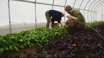Portland Reborn, Part 2: Creative Farm-to-Table