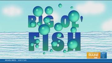 Big Ol' Fish 110418