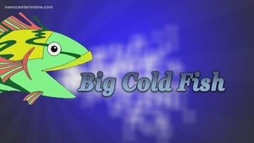 Big Cold Fish 030120