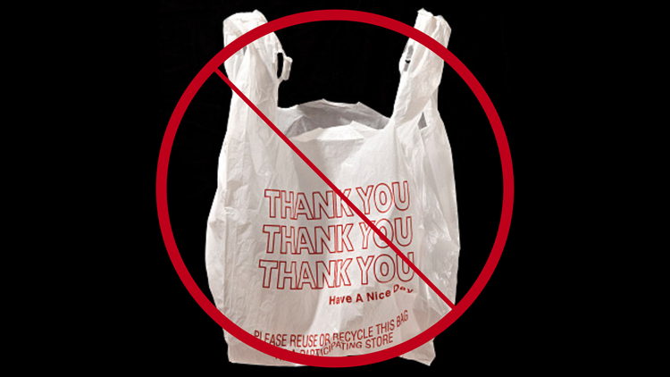 Biddeford bans plastic bags, joins growing list of Maine locations