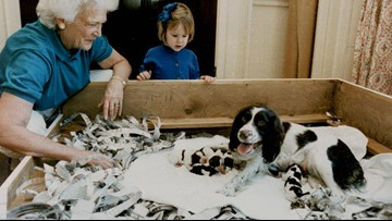Mt. Rushmore of White House dogs begins with Bush's Millie