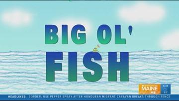 Big Ol' Fish 102018