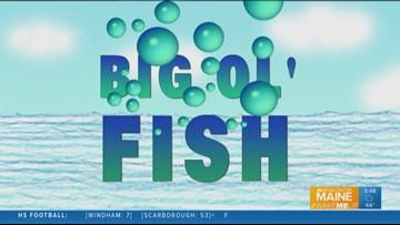 Big Ol' Fish 092218