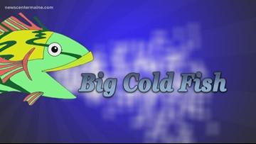 Big Cold Fish 011820
