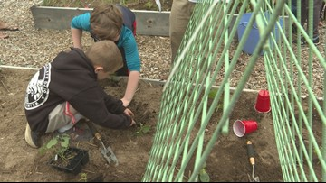 Elementary students use agriculture to learn writing, math and science