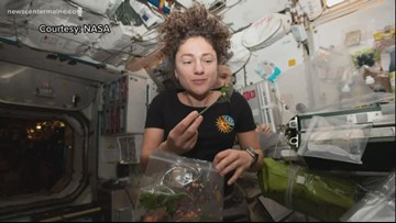 Maine astronaut will take spacewalk