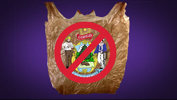Maine moves to become third with plastic bag ban