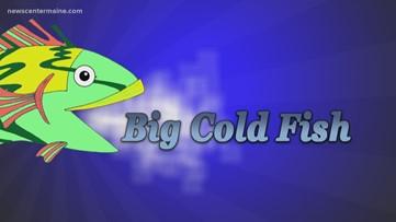 Big Cold Fish 022320