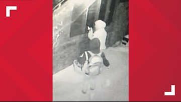 State police searching for two suspects in Eagle Lake marijuana facility burglary