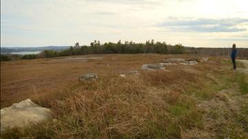 The Blueberry Fields of Appleton Ridge