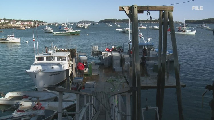 Federal drones checking out lobster gear off Maine