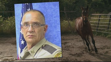 Horse 'Cpl. Cole,' named after deputy, to race for 1st time