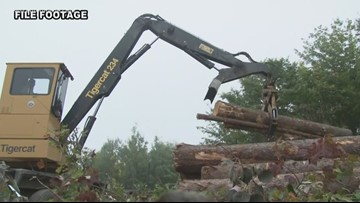 Maine Custom Woodlands settles with Maine Forest Service